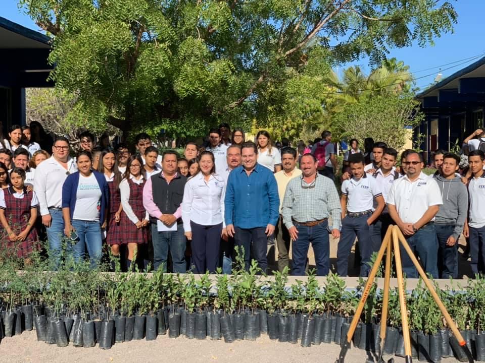 Recibe Loreto la donación de 1000 árboles para reforestación de espacios  públicos y escuelas - Monitor de Baja California Sur