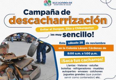Iniciará Salud Estatal jornada contra mosquito en La Paz