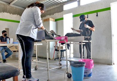 Realizan jornadas de esterilización canina y felina en san antonio